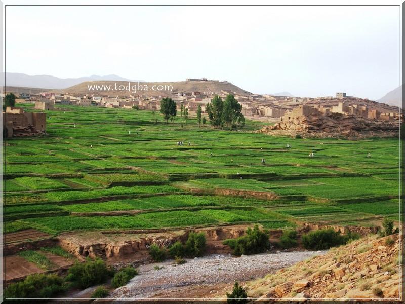 carte - La grande aventure au Maroc (paysage,carte,peuple,insolite,nature) Tamtattoucht